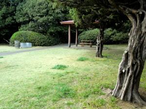 公園内で一番お気に入りのベンチは何とか大丈夫だったようだ