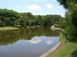 2010.06.01撮影時の池