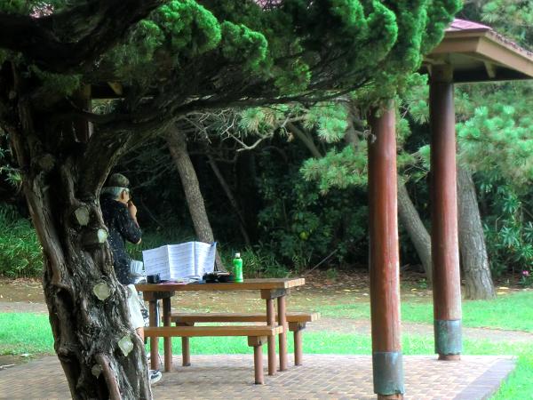 2011.08.05 海浜公園